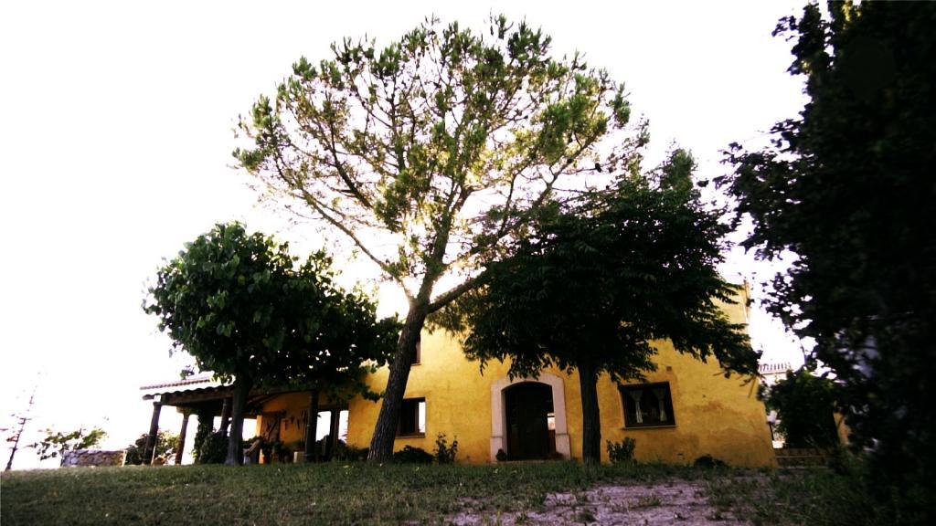 Foto 19 (V-667/2019) - Casa de pueblo en Venda a Font-rubí