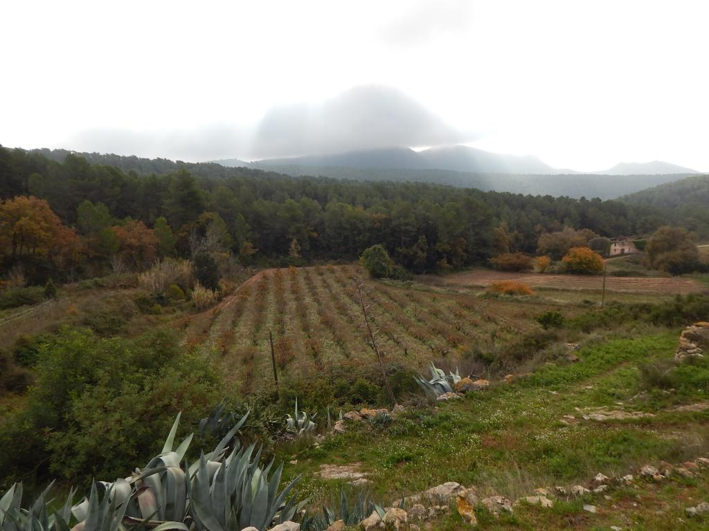 Foto 29 (V-674/2019) - Casa rural en Venda a Aiguamurcia