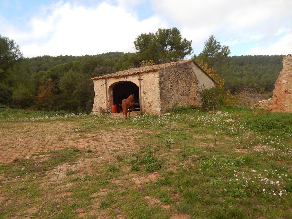 Foto 27 (V-674/2019) - Casa rural en Venda a Aiguamurcia
