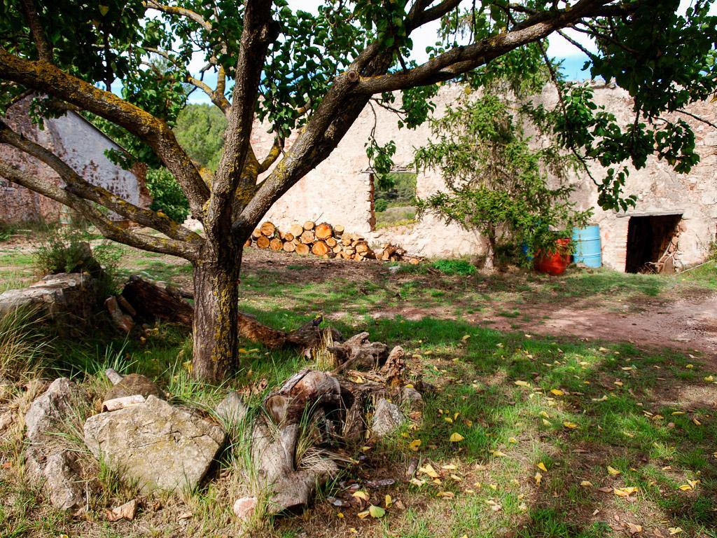 Foto 36 (V-674/2019) - Casa rural en Venda a Aiguamurcia