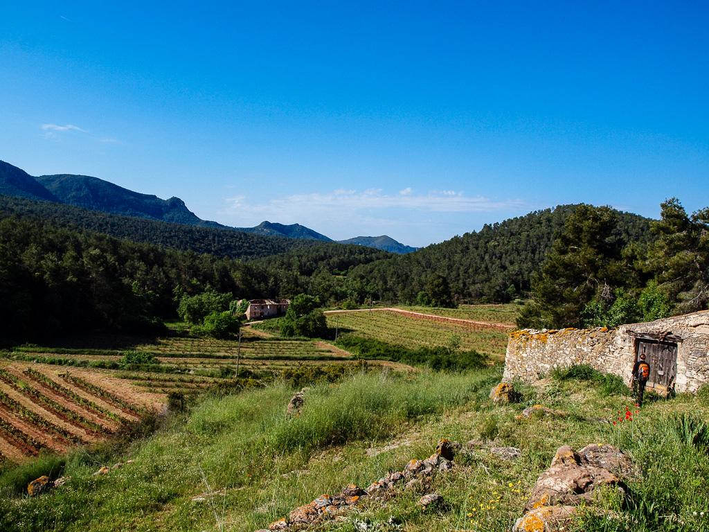 Foto 40 (V-674/2019) - Casa rural en Venda a Aiguamurcia